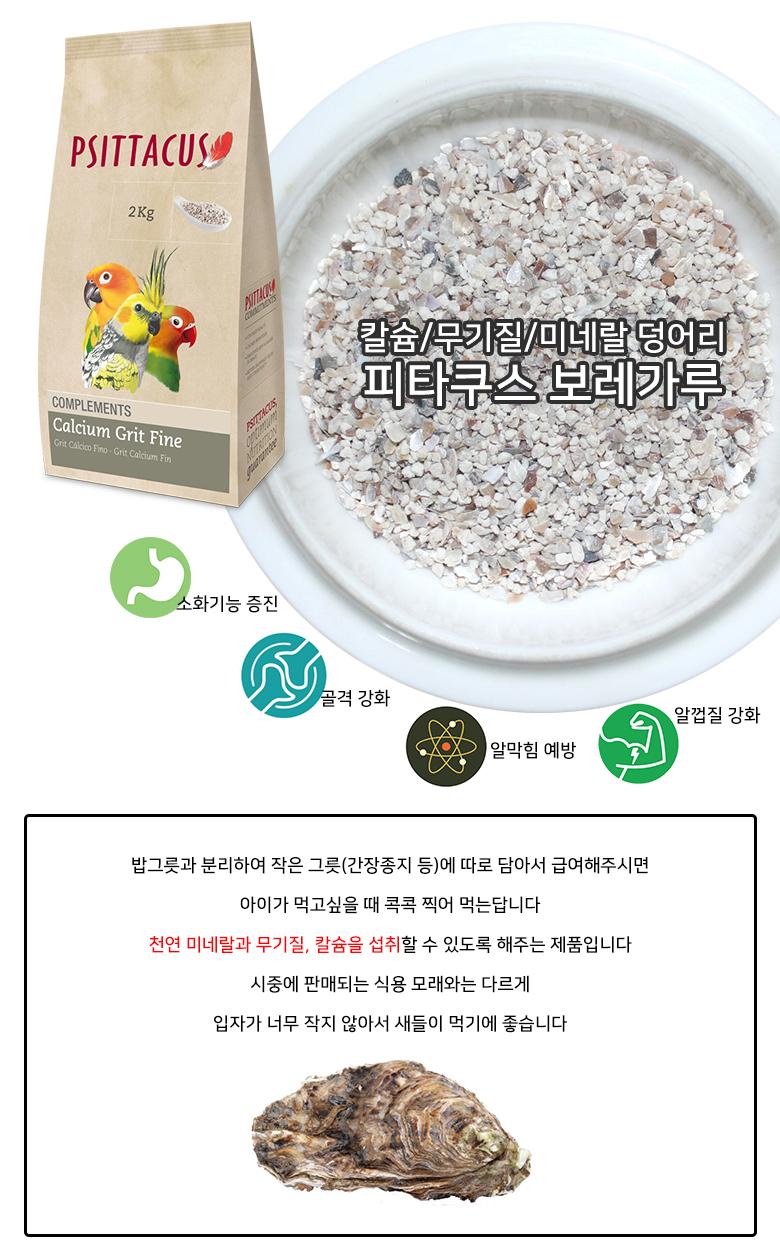 Calcium Grit Fine 2kg 칼슘 무기질 미네랄 모래 12000-1.jpg