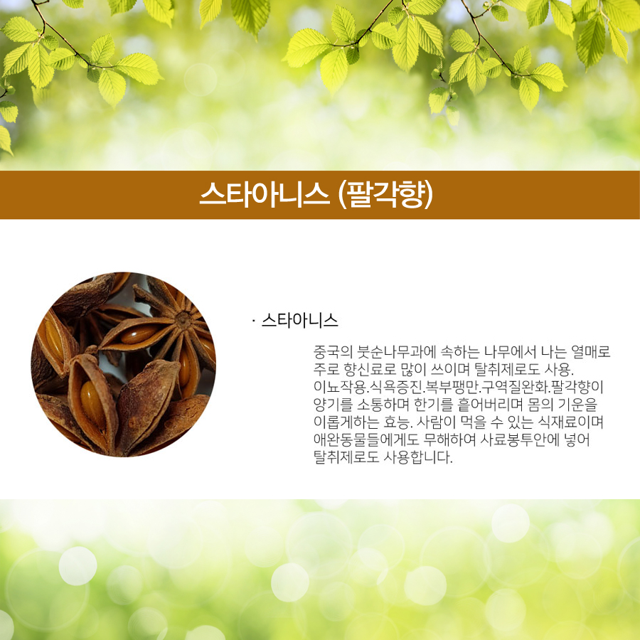 허니팜 스타아니스 30g-1 copy.jpg
